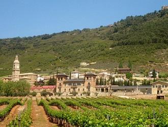 Cycling Vineyards in Spain