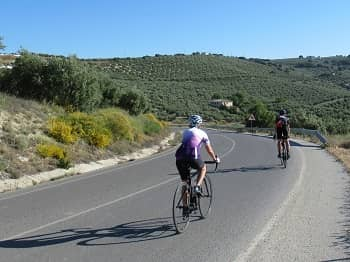 Quiet Counry Roads in Andalucia