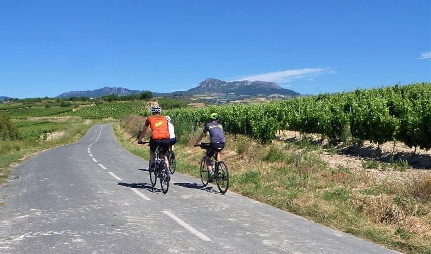 Cycling through Vineyards in Rioja