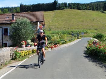 Quiet Country Lanes - Basque