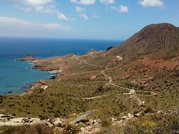 Winding Coastal Roads