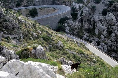 Sa Calobra - The Toughest Climb in Mallorca
