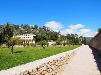 Mallorcan Raixa