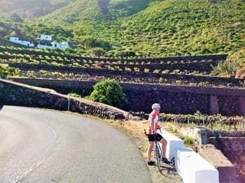 Green Scenery - Tenerife