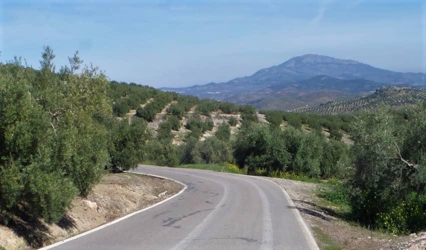 Moclín (Tózar) -  Cycling Climb in Andalucia