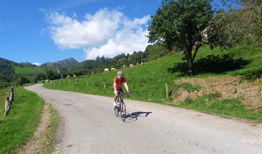 Alto del Torno (Nueva) -  Asturias Cycling Climb
