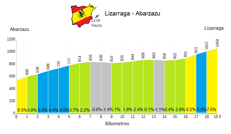 Lizarraga from Abarzazu Profile